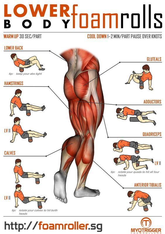 foam roller exercise | Foam Roller Exercises For Lower Body | MyoTrigger  Foamrollers | Exercise foam roller, Foam roller exercises, Roller workoutPinterest