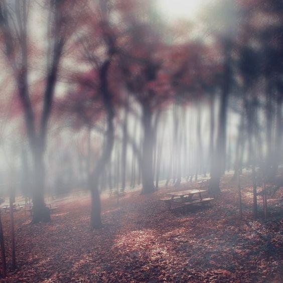 fall in love by utopic-man.deviantart.com
