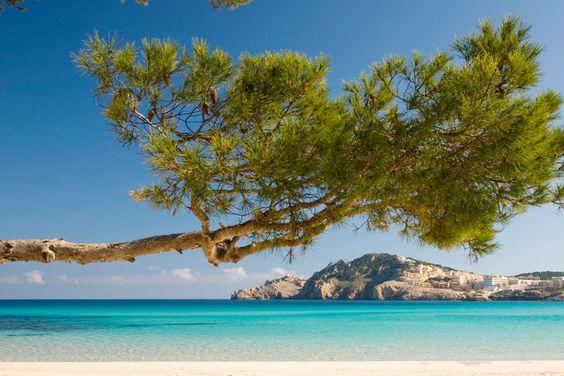 Auf Mallorca können Urlauber aus Hunderten Strände, Buchten und Hotels wählen:  TRAVELBOOK zeigt die Top 11 schönsten Beaches und die besten Unterkünfte.