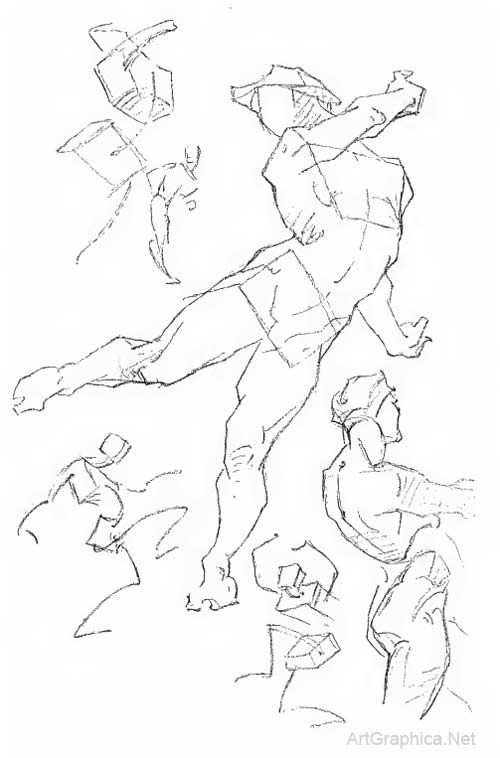 Bridgman constructive anatomy pdf