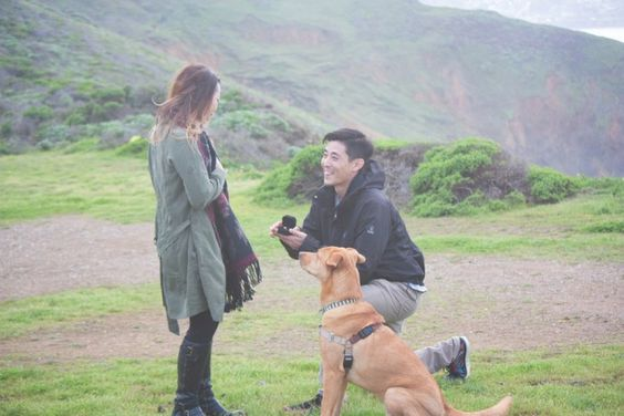 He included their dog in this hiking proposal, and it's just too sweet. <3