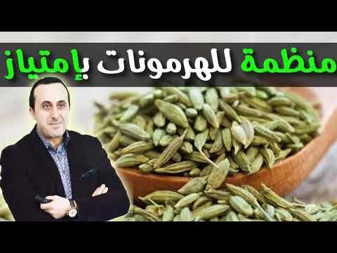 فوائد حبوب النافع المبهرة و خاصة للهرمونات يجب أن تكون جزء من وجباتك اليومية الدكتور نبيل العياشي Youtube Green Beans Vegetables Food