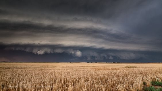 Shelf Cloud in Oklahoma, June 2014 - A shelf cloud advancing over the Oklahoma Prairie, June 1, 2014.