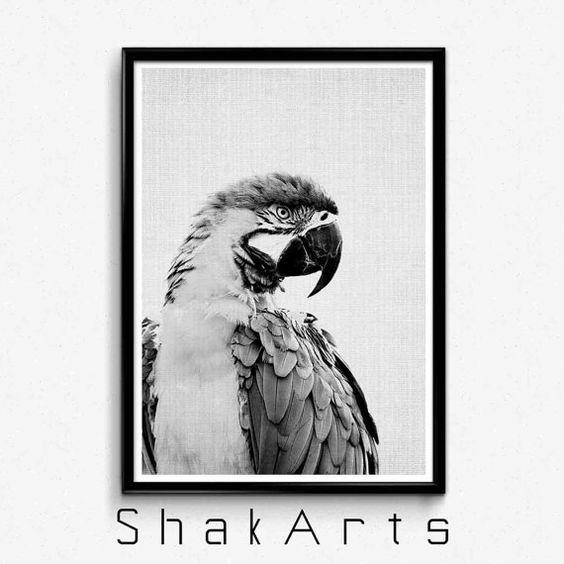 Impresión de pájaro pared impresión de pájaro Ideas de por ShakArts