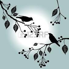 sombras de aves volando - Google Search