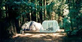 Guerneville Camping - Schoolhouse Campground, privately owned $35/night with dog, hot showers, private river access, firepits.