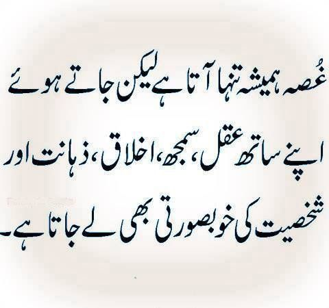 Pin By Nauman On Urdu Quotes T Urdu Quotes Urdu