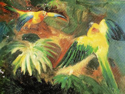Olímpia Reis Resque: A natureza animal e sua riqueza de formas e cores