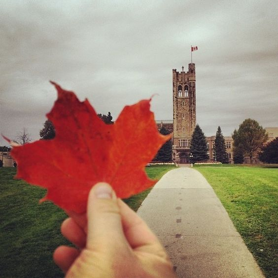 30. You Truly Love Western | Community Post: 30 Signs You Went To The University Of Western Ontario (UWO)