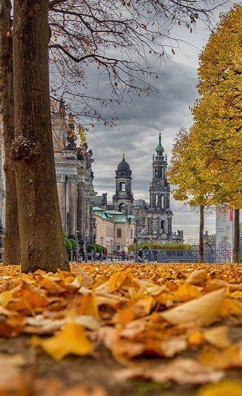 Dresden im Herbst. Den passenden Reisebegleiter findet ihr bei uns: https://www.profibag.de/reisegepaeck/ Foto: MiSeiDD