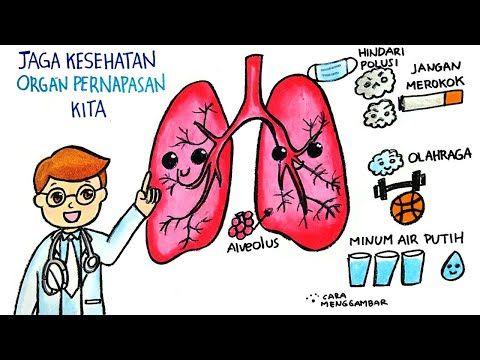 Cara Menggambar Membuat Poster Tema Menjaga Kesehatan Organ Pernapasan Yang Mudah Ditiru Ep 249 Youtube Cara Menggambar Gambar Poster