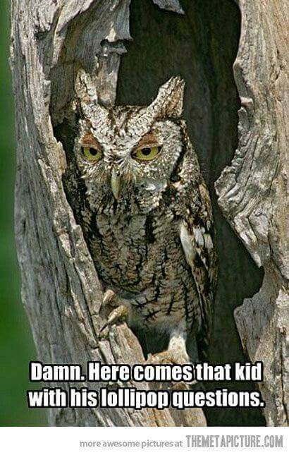 Mr. Owl....how many licks does it take????