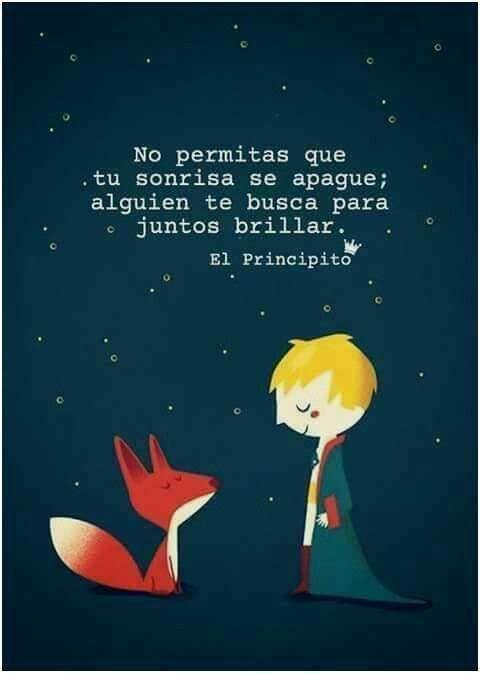 Frases Del Principito De Amistad El Zorro Y La Rosa El