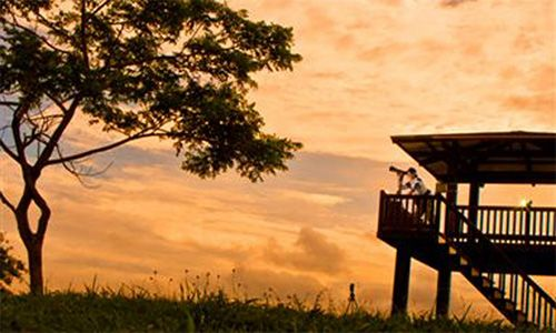 http://nuvali.ph/see-and-do/parks-and-nature/wildlife-sanctuary-bird-watching/