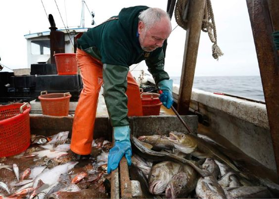 Fading fishermen: Industry faces warming world | The Salt Lake Tribune