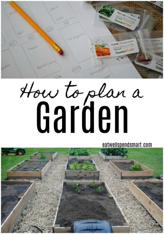 How to plan a garden. Learn about growing zones, how to choose what to plant, and what to consider when choosing a plot. #gardening #homestead #garden
