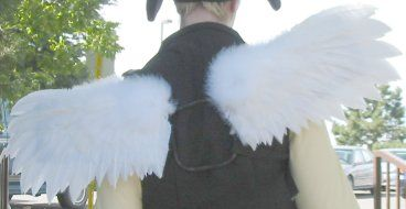 Great sturdy feather wing tutorial. These aren't flimsy like the ones with nylons and coat hangars. Good for cosplay or Halloween parties where you need them to hold up to moving around, or even just for dress up.