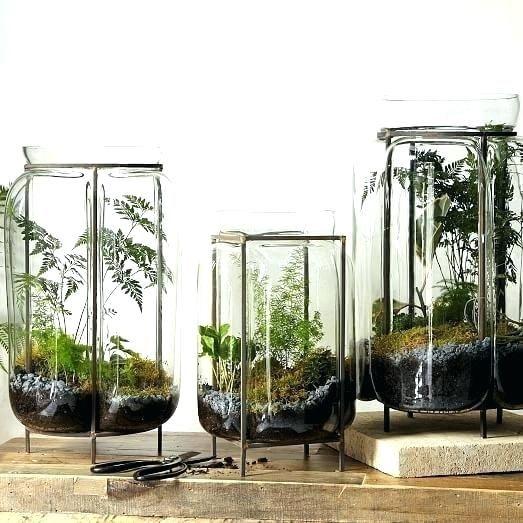 Extra Large Terrarium Glass Terrariums, Large Glass Terrarium Jars