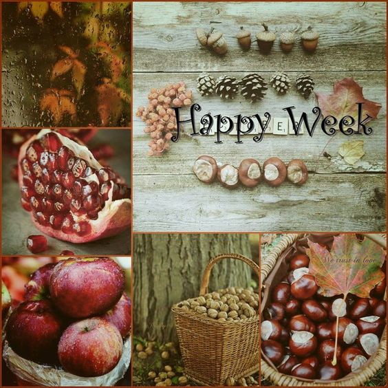 Hello Happy Week