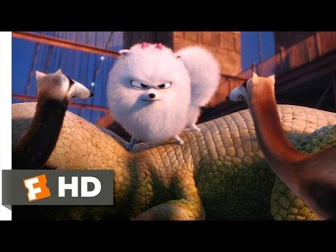 The Secret Life Of Pets Gidget Saves Max Scene 7 10