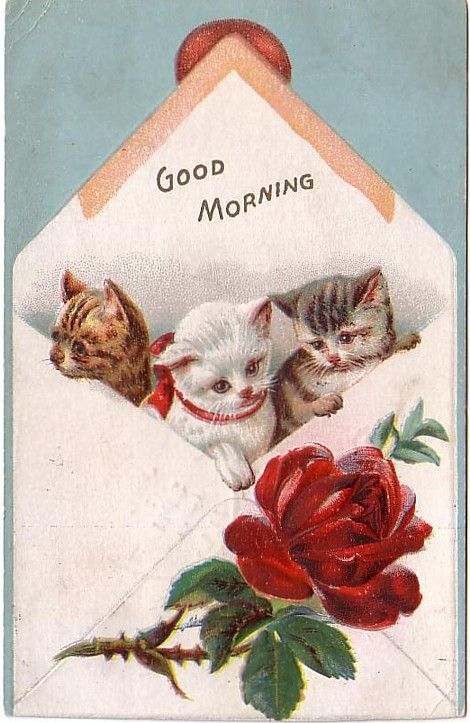 Vintage Postcard Baby Kittens with Rose Greeting Good Morning (Image1)