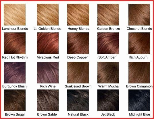 Copper Blonde Hair Color Best Of Honey Colored Hair Light Copper Brown Hair Color Copper Blonde In 2020 Brown Hair Color Chart Hair Color Chart Bronze Hair Color