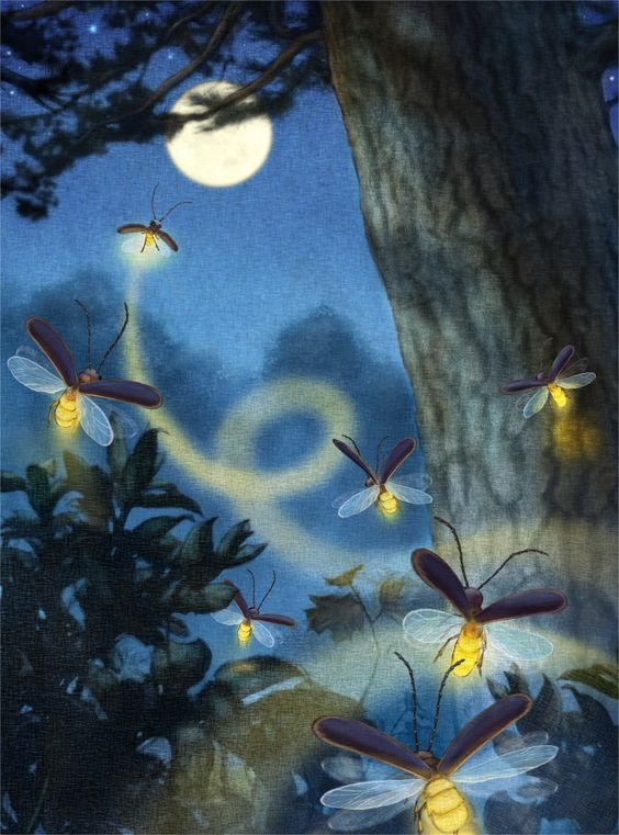 Christopher Denise illustrated Alison McGhee's upcoming Firefly Hollow, …