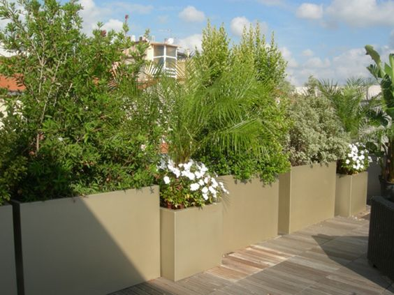 jardinières pour brise-vue   exterieur   Pinterest   Brise vue ...