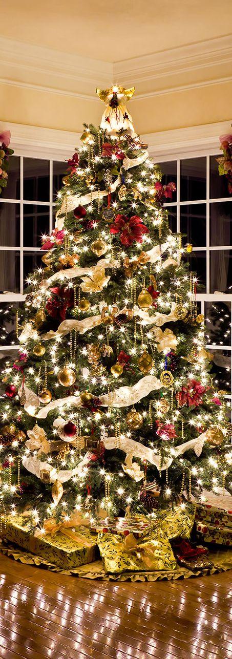 Best Designer Christmas Trees