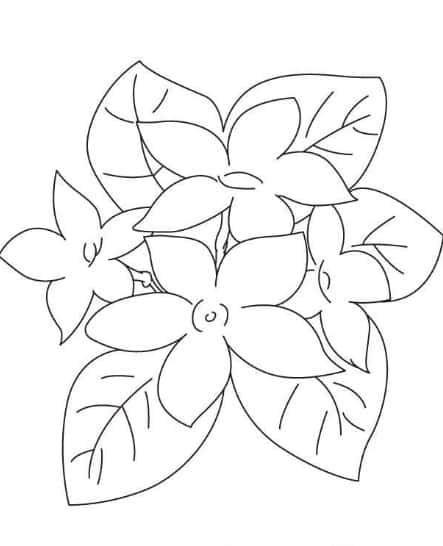 80 Gambar Bunga Cantik Dan Mudah Terbaik Flower Drawing Flower Coloring Pages Hawaiian Flower Drawing