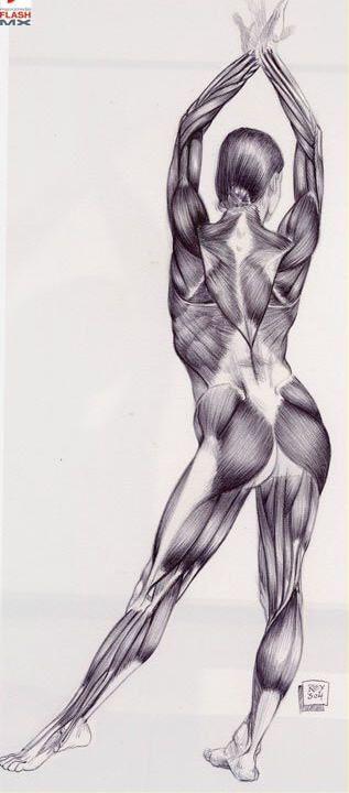 7 tutoriais de desenho de figura humana: