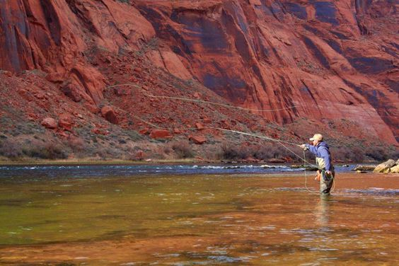 Are you just learning how to fly fish, or wanting to learn? This article is for you. We will teach you how to get started in 5 easy steps. What are you waiting for, start learning now!