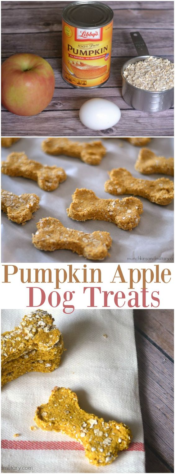 Homemade dog treats made with pumpkin and apple! Caesar went CRAZY for these!