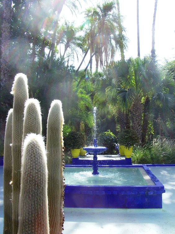 Book your tickets online for jardin majorelle marrakech see 17844 reviews articles and 6278 photos of jardin majorelle ranked no 2 on tripad