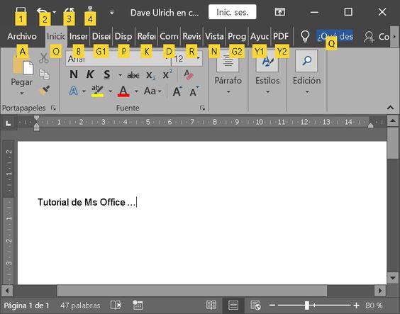 Tema de Ms Office gris