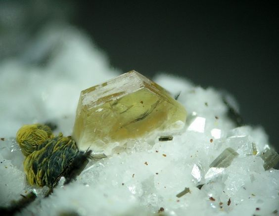 Synchisite-(Ce). Wannigletscher-Cherbadung, Kriegalptal, Binntal, Wallis, Schweiz Taille=5 mm Copyright Joachim Esche