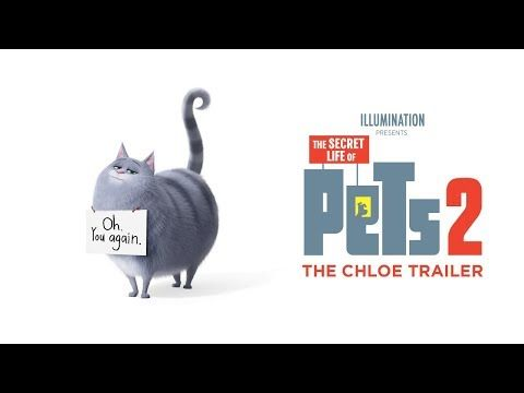 The Secret Life Of Pets 2 Chloe Trailer Secret Life Of Pets Secret Life Happy Death Day