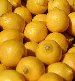 Lemon Turkey Cutlets - Joanne Weir