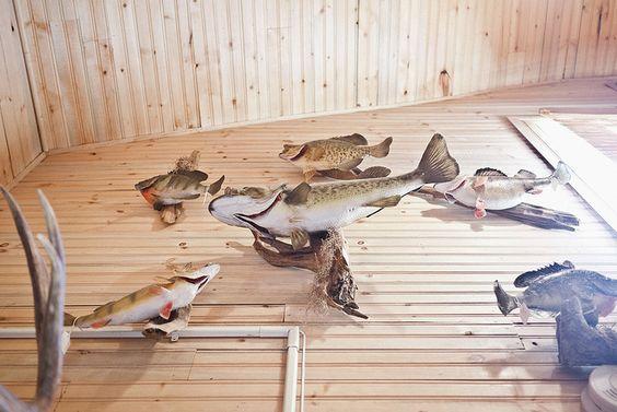 www.goodbeerhunting.com  Fox River Spirits, IL