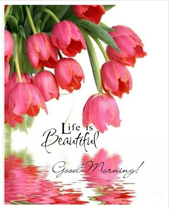 ~ ♡ Good Morning ♡~