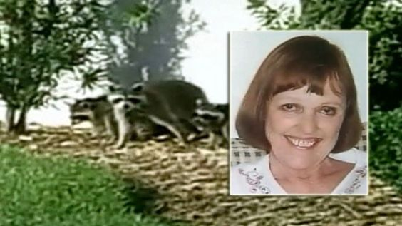 Video: Elderly Woman Attacked by Raccoons