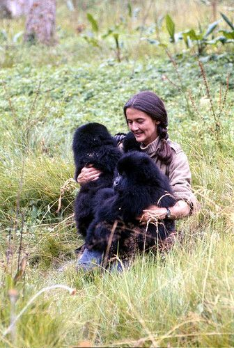 Diane Fossey gave her life to save those endangered species.