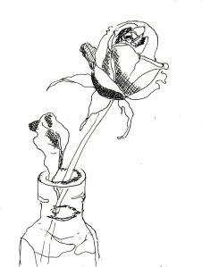 Rose Nr. 120