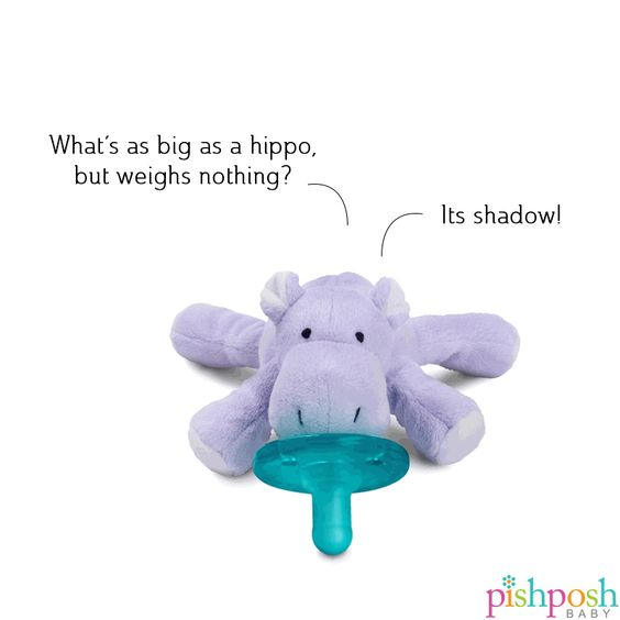 No more lost pacifiers at 2am! Choose from 15 of the cutest soothers ever, that double as cuddly huggable pals, including Hippo, who's currently exploring a side career in standup. Shop our entire WubbaNub collection! Makes a great gift - $13.95!  http://www.pishposhbaby.com/wubbanub-infant-pacifiers.html