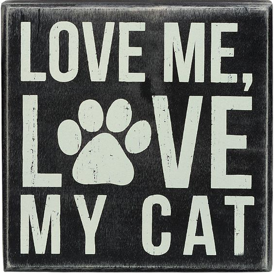 my love for cats If the human race could be said to have a love-hate relationship with any single  species, the domestic cat (felis catus) is the most likely.