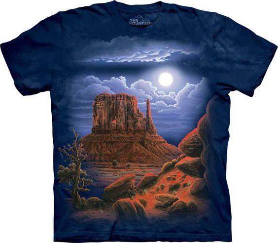 Paisaje nocturno del Desierto.#1102