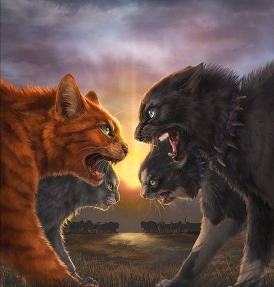 Firestar Vs Scourge Warrior Cats In 2020 With Images Warrior