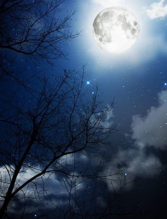 ولما رأيت البدر في الليل ساطعا تذكرته والشيء بالشيء يذكر Scenery Background Night Scenery Dark Backgrounds
