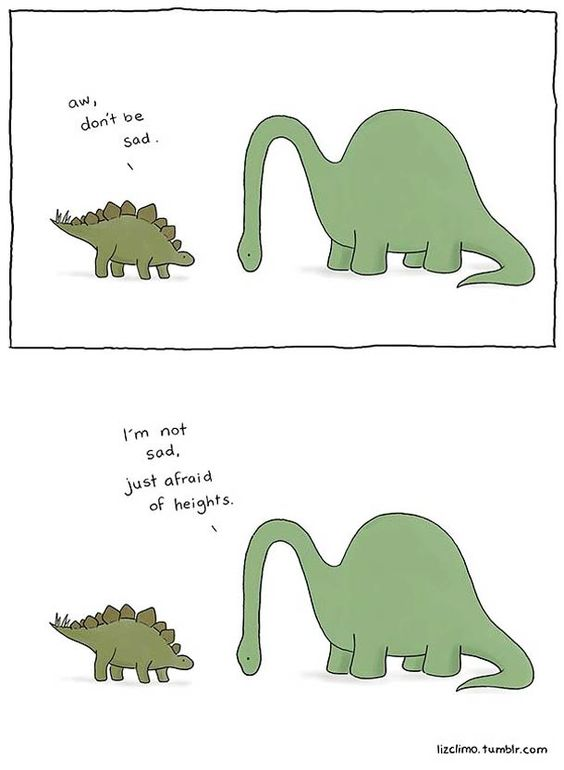 Liz-Climo-cute-animals-3