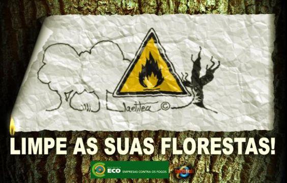 Florestas Limpas de Laetitea